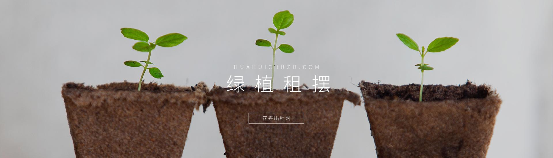 北京蓝润园林绿化工程有限公司